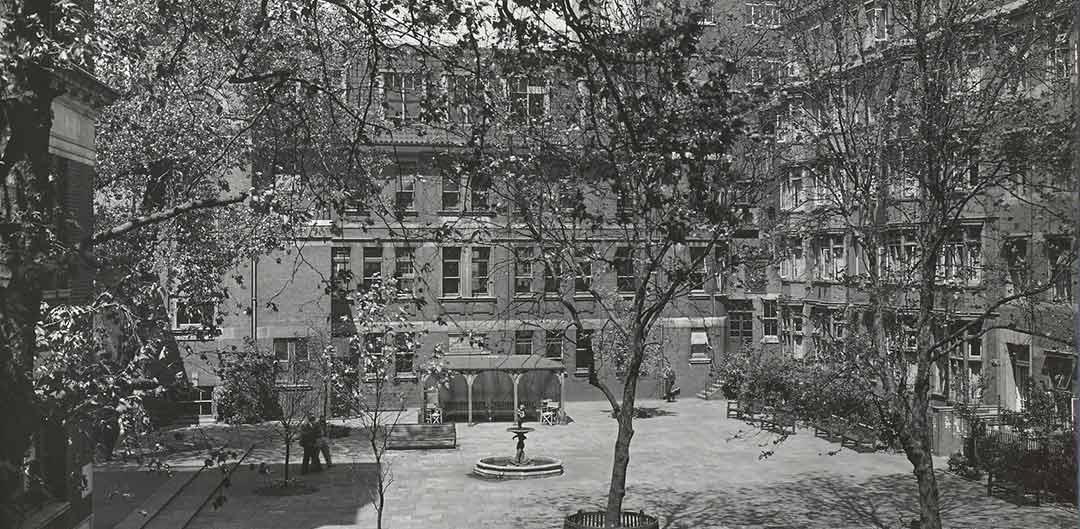 Middlesex Hospital garden